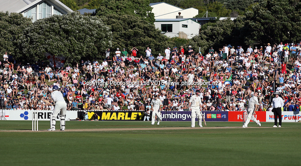 The fans and crowd on the bank watch the cricket at Basin Reserve.<br />