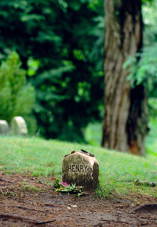 Gravestone of writer Henry David Thoreau in Sleepy Hollow Cemetery in the village of Concord, Massachusetts, New England, USA
