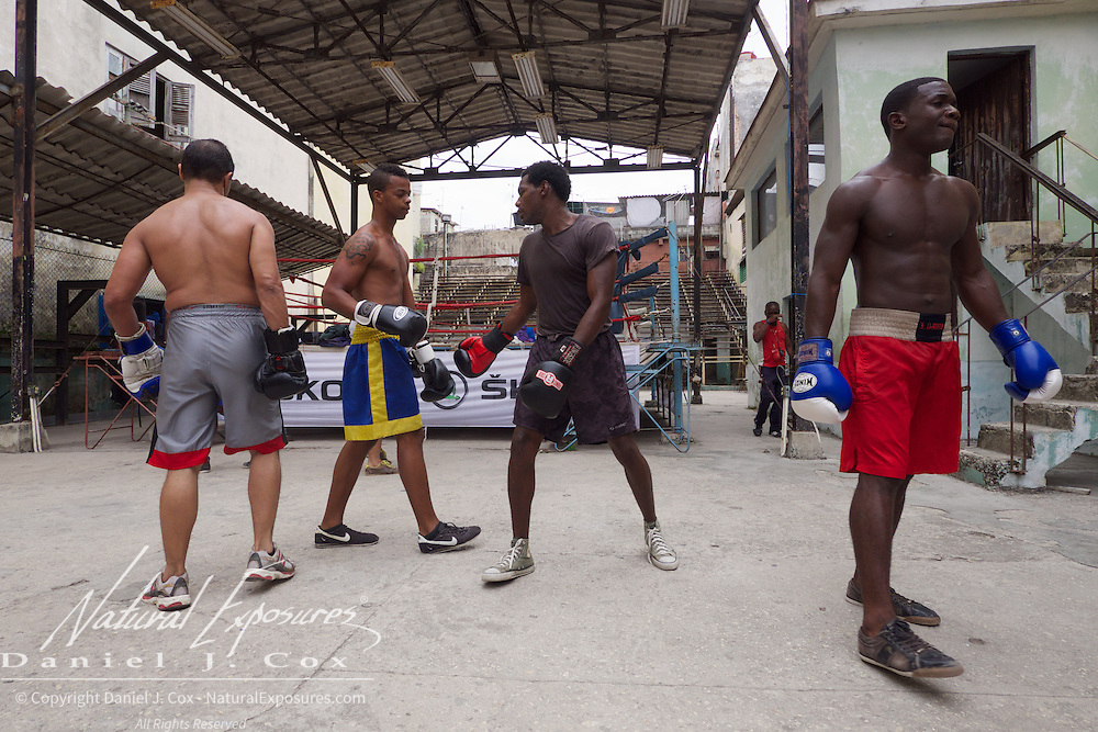 Young Cuban boxers training at the Rafael Trejo Boxing Gym In Havana, Cuba