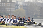 Putney, GREAT BRITAIN,    Bull [left]  on the Surrey station as both crews approach Barnes Rail Bridge, during the 2008 Varsity/Oxford University [OUBC] Trial Eights, raced over the championship course. Putney to Mortlake, on the River Thames. Thurs. 11.08.2008 [Mandatory Credit, Peter Spurrier/Intersport-images].Crews - .Bull, Bow. Colin KEOGH, 2. Douglas BRUCE, 3.Michal PLOTOWIAK, 4. David HOPPER, 5. Aaron MARCOVY, 6. Ben HARRISON, 7. Sjoerd HAMBURGER, Stroke Colin SMITH and Cox Philip CLAUSEN-THUE...Bear, Bow. Tim FARQUHARSON, 2. Ben ROSENBERGER, 3. Mike VALLI. 4. Alex HEARNE, 6 Tom SOLESBURY, 7 George BRIDGEWATER, Stroke, Ante KUSURI and Cox Adam BARHAMAND. Varsity Boat Race, Rowing Course: River Thames, Championship course, Putney to Mortlake 4.25 Miles,