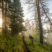 Andrew Whiteford descends the Parallel Trail on Teton Pass near Wilson, Wyoming. Into the valley of fog.