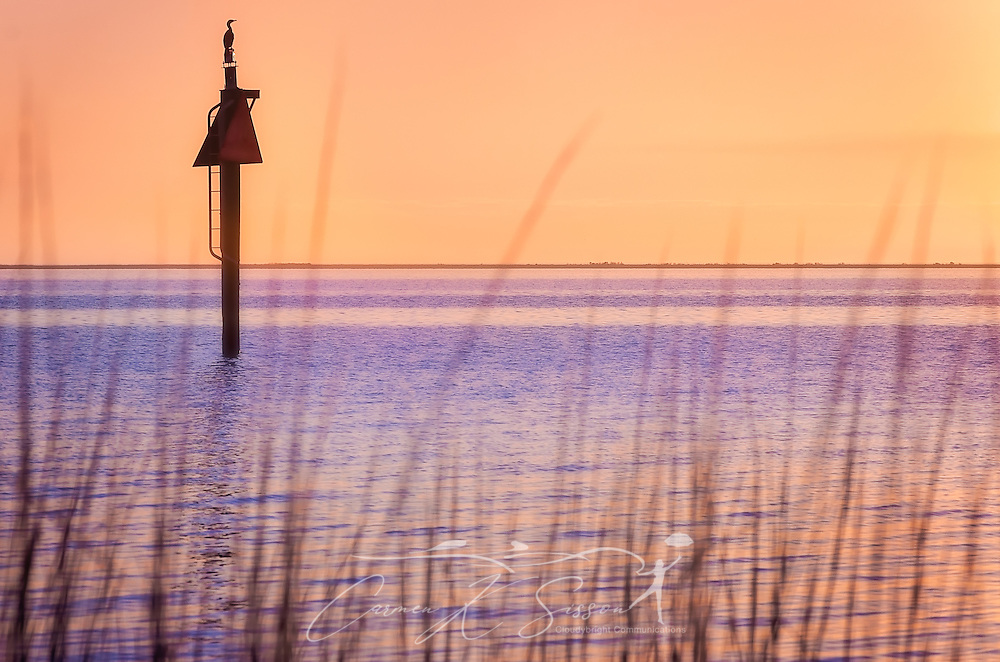 A heron sits on a daybeacon as the sun sets on Coden Beach, January 13, 2017, in Coden, Alabama. (Photo by Carmen K. Sisson/Cloudybright)