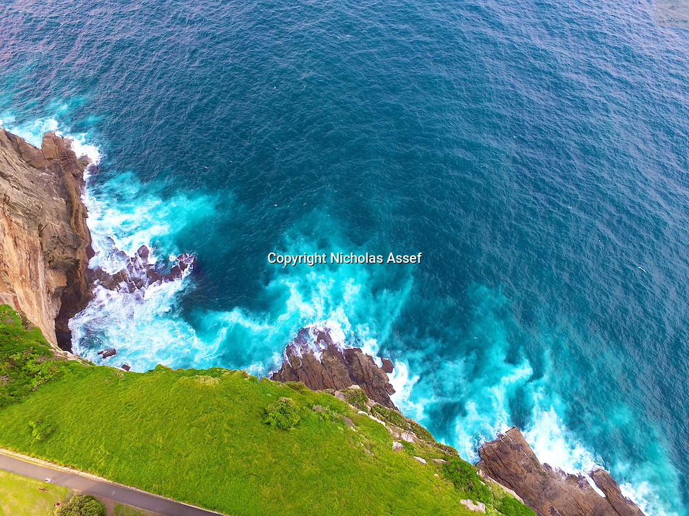 High above a park edging the Blue Pacific Ocean