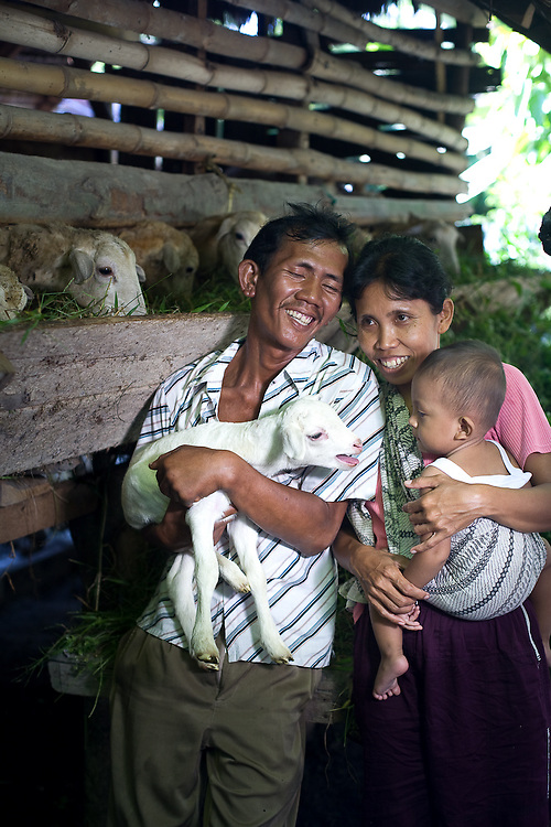 Kota Pari Village near Medan - North Sumatra, Indonesia  Nov. 2008. (Heifer Participant) Jumini (center) and her husband Riahmin (left) stand next to their sheep holding a young lamb and their son, Imam (right).