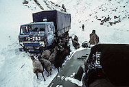 In the Salang pass following the storm. Military equipment totally blocked by the snowfall on one of the bases of the Salang pass.    Afghanistan    / Dans le col du Salang après la tempête    Afghanistan