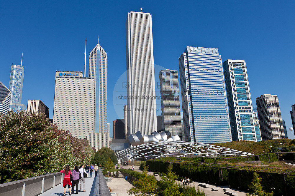 Skyline of Chicago from Millennium Park in Chicago, IL, USA.