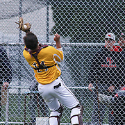 St. Elizabeth Catcher David Hazelton, Jr (14) catches a foul ball during of a varsity scheduled game between the Colonials of William Penn and The St. Elizabeth Vikings Saturday, April 25, 2015, at William Penn High School baseball field in New Castle Delaware.<br /> <br /> William Penn defeats St. Elizabeth 6-5