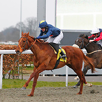 Secret Of Success and Chris Catlin winning the 6.00 race