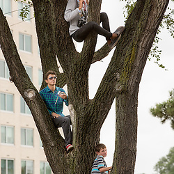Lisa Johnston | lisajohnston@archstl.org  | Twitter: @aeternusphoto  Boys sat in a tree as Pope Francis closed the 2015 World Meeting of Families with an outdoor Mass celebrated on the Benjamin Franklin Parkway.