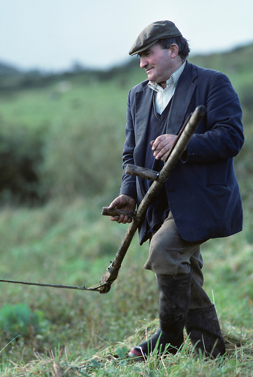 Ireland, County Clare, Inaugh, Farmer Mickey Cullinan works in fields on the farm that has been in his family for 200 years