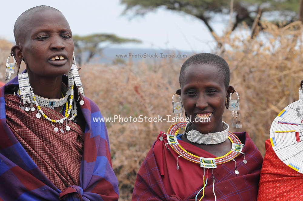 Africa, Tanzania, Maasai tribe an ethnic group of semi-nomadic people. A group of women