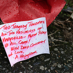 "A note on a bouquet of flowers gets wet in the rain at a makeshift memorial outside Marysville-Pilchuck High School the day after a school shooting in Marysville, Washington October 25, 2014. Relatives of a Washington state teen accused of a high school shooting rampage said on Saturday that they were living in a ""nightmare"" and struggling to understand why the boy targeted his two cousins and several friends before killing himself. One girl was killed and four other freshman students were severely wounded in Friday's morning rampage inside the cafeteria at Marysville-Pilchuck High School, north of Seattle. REUTERS/Jason Redmond (UNITED STATES - Tags: CRIME LAW SOCIETY EDUCATION)"