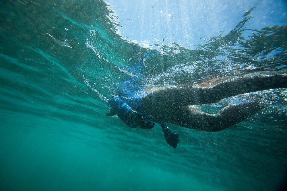 Snorkeling, Kaena State Park