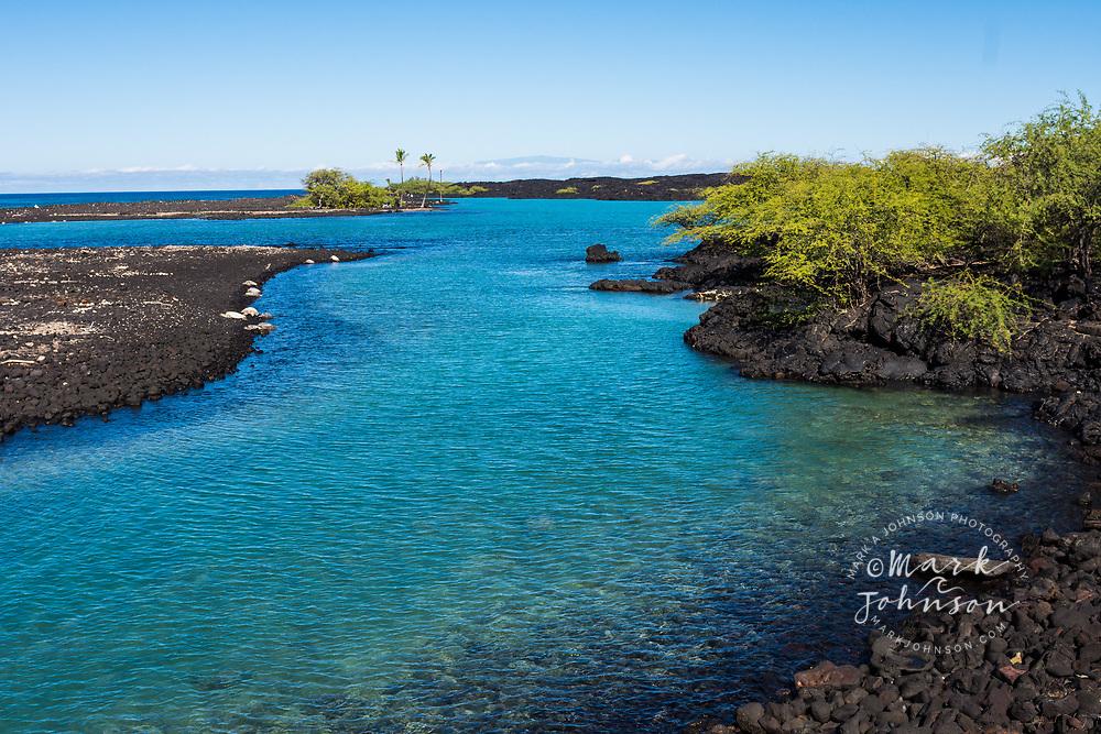 A group of beached green sea turtles resting at Kiholo Bay, Big Island (Hawaii Island), Hawaii