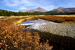 CA: Yosemite National Park, Autumn scene, High Country, fall leaves     .Photo Copyright: Lee Foster, lee@fostertravel.com, www.fostertravel.com, (510) 549-2202.cayose237