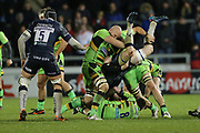Tipping during the Aviva Premiership match between Sale Sharks and Northampton Saints at the AJ Bell Stadium, Eccles, United Kingdom on 25 November 2017. Photo by George Franks.