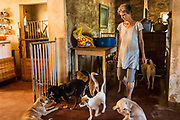 EVA RUPPEL walks with a small pack of rescued dogs inside her home near Kandy, Sri Lanka, on Wednesday, February 21, 2018. Ruppel does not cage the approximate 170 rescued dogs living with her, allowing them freedom to roam and interact in small packs in multiple pens throughout her property, as well as inside her home. Ruppel created Tikiri Trust, with the financial assistance of her father, to rescue and rehome Sri Lanka's street dogs.<br /> <br /> <br /> It is impossible to visit Sri Lanka without seeing street dogs in nearly every public space, near hotels, guest houses and restaurants, schools, offices, markets, hospitals, police stations, bus terminals, railway stations, temples, etc. These dogs do not have their own homes, but they are usually highly tolerated and are typically fed collectively by people in a particular area.<br /> <br /> According to the NGO, Kandy Association for Community Protection through Animal Welfare (KACPAW), 100 unsterilized dogs will give rise to 3,000 dogs in one year. The Sri Lankan government, as well as several NGOs, work to spay/neuter animals, but there is need to educate the public and maintain funds to stay on top of their efforts.<br /> <br /> Eva Ruppel left Germany for a three-month visit to Sri Lanka, which included time in a Buddhist meditation retreat, and she remains in this island nation 37 years later.<br /> <br /> While married, Ruppel&rsquo;s husband asked that the couple keep only three dogs in their home at any one time, and she respected his wishes. This 60-something year old lost her husband to a ruptured brain blood vessel in 1995 when he was 51 years old, after nine years of marriage. After his death, she began rescuing more and more animals and she now lives with 170 dogs, plus a dozen or so cats.<br /> <br /> With the support of her father, she started Tikiri Trust. Her father passed away in 2011, and he left her an inheritance, which she continues to use to support her cause. <br /> <br /> Ruppel, who is fluent in German, English and Sinhala, said that she has found homes for &ldquo;hundr