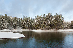 """Snowy Donner Lake 3"" - This snowy shore line was photographed at the East shore of Donner Lake in the morning, right after a Spring snow shower."