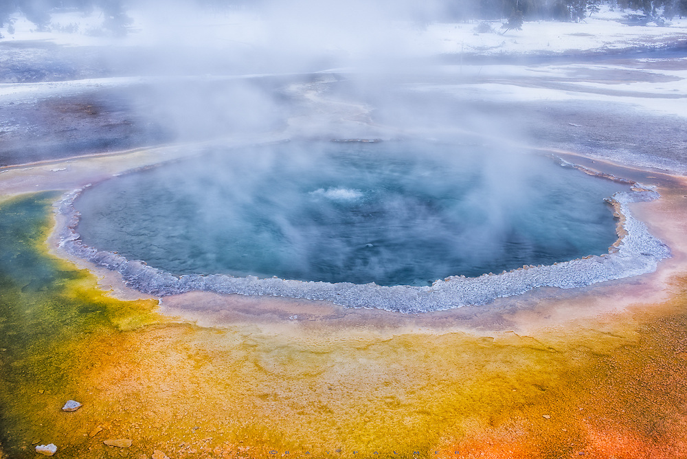 Crested Pool, Old Faithful Basin, Yellowstone.  I am on an ancient volcano, watching the earth breathe.  Here the planet's heartbeat comes close to the surface, the magma in it's veins not far below the skin, and every exhale bubbles up through the pool, tinged with brimstone, and steaming audibly in the air.  I've labored to get here, bogged down in winter layers, tiptoeing around bison and elk, never stopping long in the bitter cold.  But now I stand awhile at the edge of the cauldron, waiting for a cough from down deep to blow a geyser skyward. Give me a sign that all is right in the world.  As long as you breathe, I think, I have hope.  I stew like the water, unwilling to give up, wanting to believe.