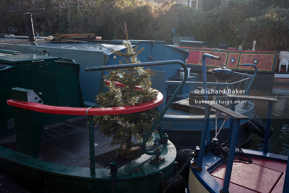 A Chistmas tree stands on a moored narrow boat, on 2nd January 2017, in Regent's Canal, central London, England.
