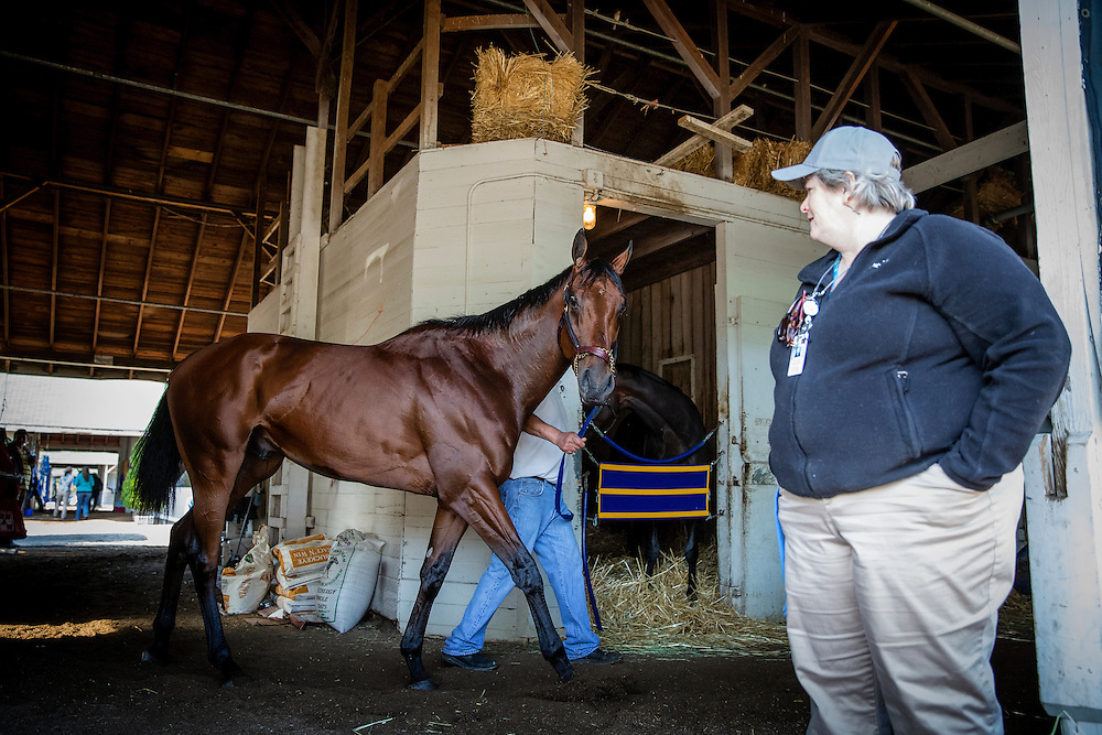 April 29, 2015: A security guard watches American Pharoah walk the shed row at Churchill Downs Louisville Ky. Alex Evers/ESW/CSM