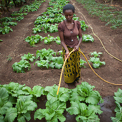 Tanzania: food security and health