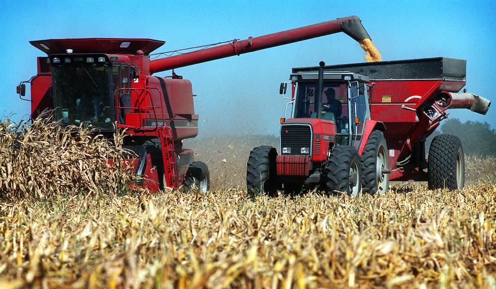 Americana.<br /> <br /> Corn harvest, Ames, Iowa.
