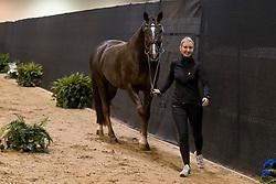Oatley Kristy, AUS, Du Soleil<br /> Horse Inspection<br /> FEI World Cup Dressage Final, Omaha 2017 <br /> © Hippo Foto - Jon Stroud<br /> 29/03/2017