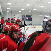 The Boston University bench during the UConn Vs Boston University, Women's Ice Hockey game at Mark Edward Freitas Ice Forum, Storrs, Connecticut, USA. 5th December 2015. Photo Tim Clayton
