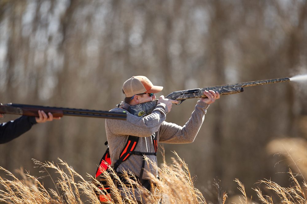 Mid twenties male shoots quail during an upland hunt.