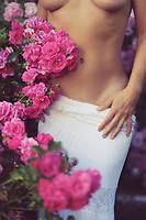 Artistic sensual body parts closeup of a sexy half naked woman standing in a rose garden behind pink flowers of roses