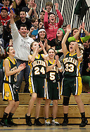John A. Coleman players Melanie Kuhn (11), Dayna Callahan (24), Kate Davis (5), Ana Saccoman (33) and fans in the stands celebrate after Coleman's Taylor Leonard made a 3-point basket in the fourth quarter of the  Mid-Hudson Athletic League championship game against Wallkill at Ulster County Community College in Stone Ridge on Friday, Feb. 19, 2010. Coleman won the game 44-32.