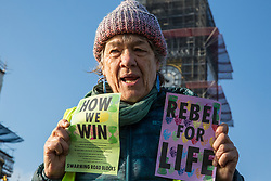 London, UK. 17th November, 2018. An environmental campaigner from Extinction Rebellion stands in front of the Houses of Parliament on Westminster Bridge, one of five bridges blocked in central London, as part of a Rebellion Day event to highlight 'criminal inaction in the face of climate change catastrophe and ecological collapse' by the UK Government as part of a programme of civil disobedience during which scores of campaigners have been arrested.