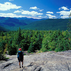 Hiking. Mt. Crawford, just off the Davis Path and Cohos Trail.  White Mountain N.F., NH