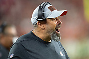 Cleveland Browns offensive coordinator Todd Haley yells out from the sideline as the team disputes an official's call during the 2018 NFL regular season week 3 football game against the New York Jets on Thursday, Sept. 20, 2018 in Cleveland. The Browns won the game 21-17. (©Paul Anthony Spinelli)