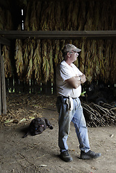 Tobacco hanging in Fayette County, Friday, Sept. 10, 2010 at Elkchester Road Farm in Lexington.