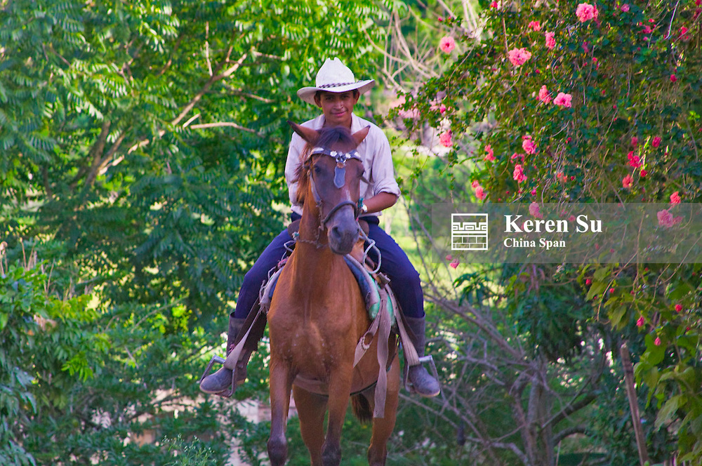 Man riding on horseback, Honduras