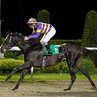 If So and Eddie Ahern winning the 8.20 race