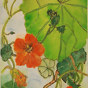 Florals / Botanicals - small
