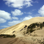 Sand dunes along 90-Mile Beach in Northland. Ninety Mile Beach is a beach located on the western coast of the far north of the North Island of New Zealand. It stretches from just west of Kaitaia towards Cape Reinga along the Aupouri Peninsula. Northland, New Zealand, 21st November 2010 Photo Tim Clayton