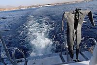 Våtdrakt på dykkebåt, Rødehavet