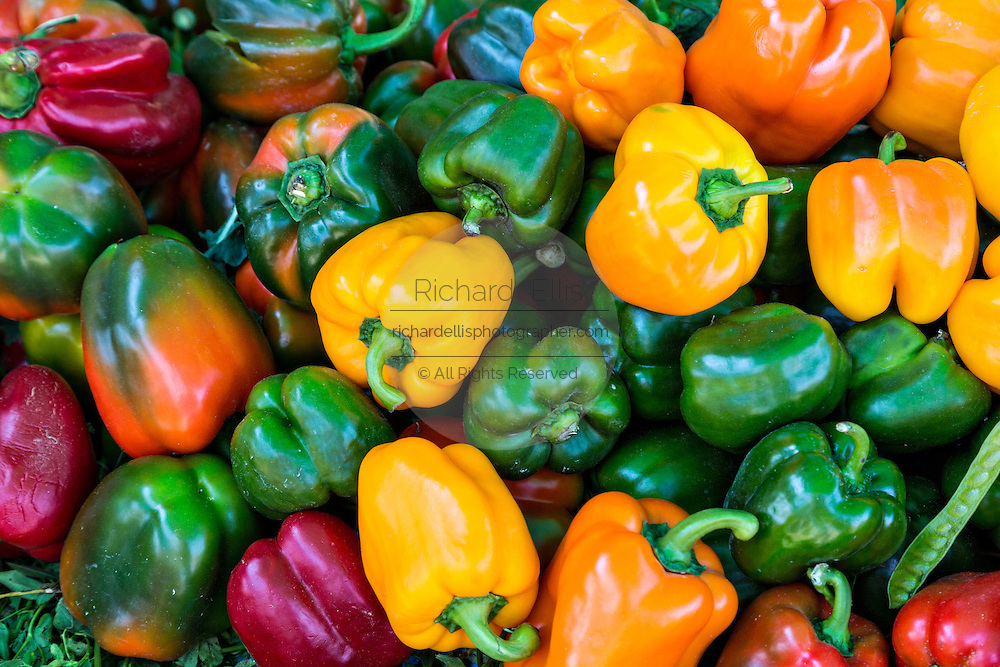 Fresh sweet bell peppers at Benito Juarez market in Oaxaca, Mexico.