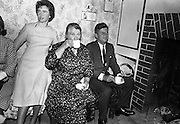 Kennedy in Ireland - with Relatives in Dunganstown.26.06.1963