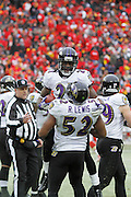 Ray Lewis (52) and Lardarius Webb (21) of the Baltimore Ravens celebrate after a turnover against the Kansas City Chiefs during the AFC Wild Card Playoff game at Arrowhead Stadium on Jan. 9, 2011 in Kansas City, MO.