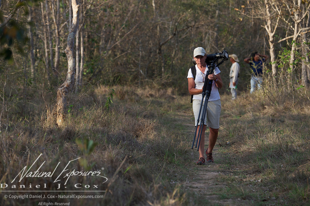 Tourists walking the trail near the SouthWild Lodge, Pantanal, Brazil