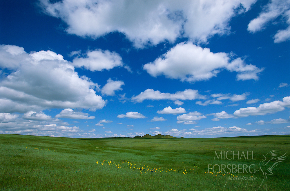 Ogallala National Grasslands, Nebraska
