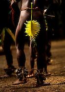 Vanuatu, Malampa Province, Malekula Island, small nambas dance