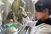 chemistry, Molecular Cellular Biology, Shiyong Wu, College of Arts and Sciences, Edison Biotechnological Institute, Ridges