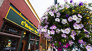 O'Briens Pub and flower basket, Ouray, Colorado USA