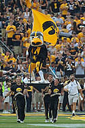 September 07 2013: Iowa Hawkeyes mascot Herky takes the field before the start of the NCAA football game between the Missouri State Bears and the Iowa Hawkeyes at Kinnick Stadium in Iowa City, Iowa on September 7, 2013. Iowa defeated Missouri State 28-14.